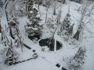 2階からの坪庭