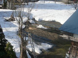 雪消えを待つ畑