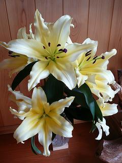 「ゆり」の花