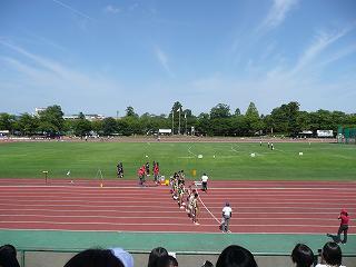 高田競技場