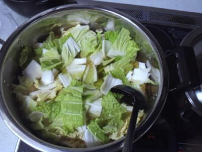 我が家の白菜