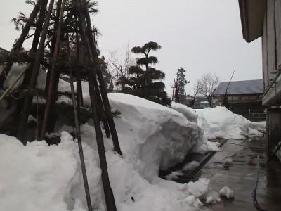 雪の量が減る
