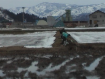 側溝の泥上げ