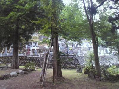 普光寺の墓地