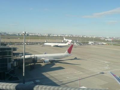 飛行機がたくさん