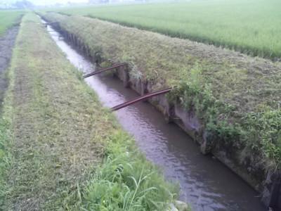 大排水の両脇